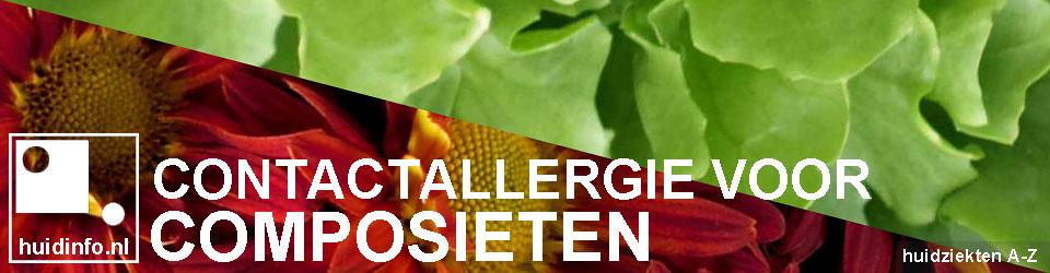 allergie voor composieten